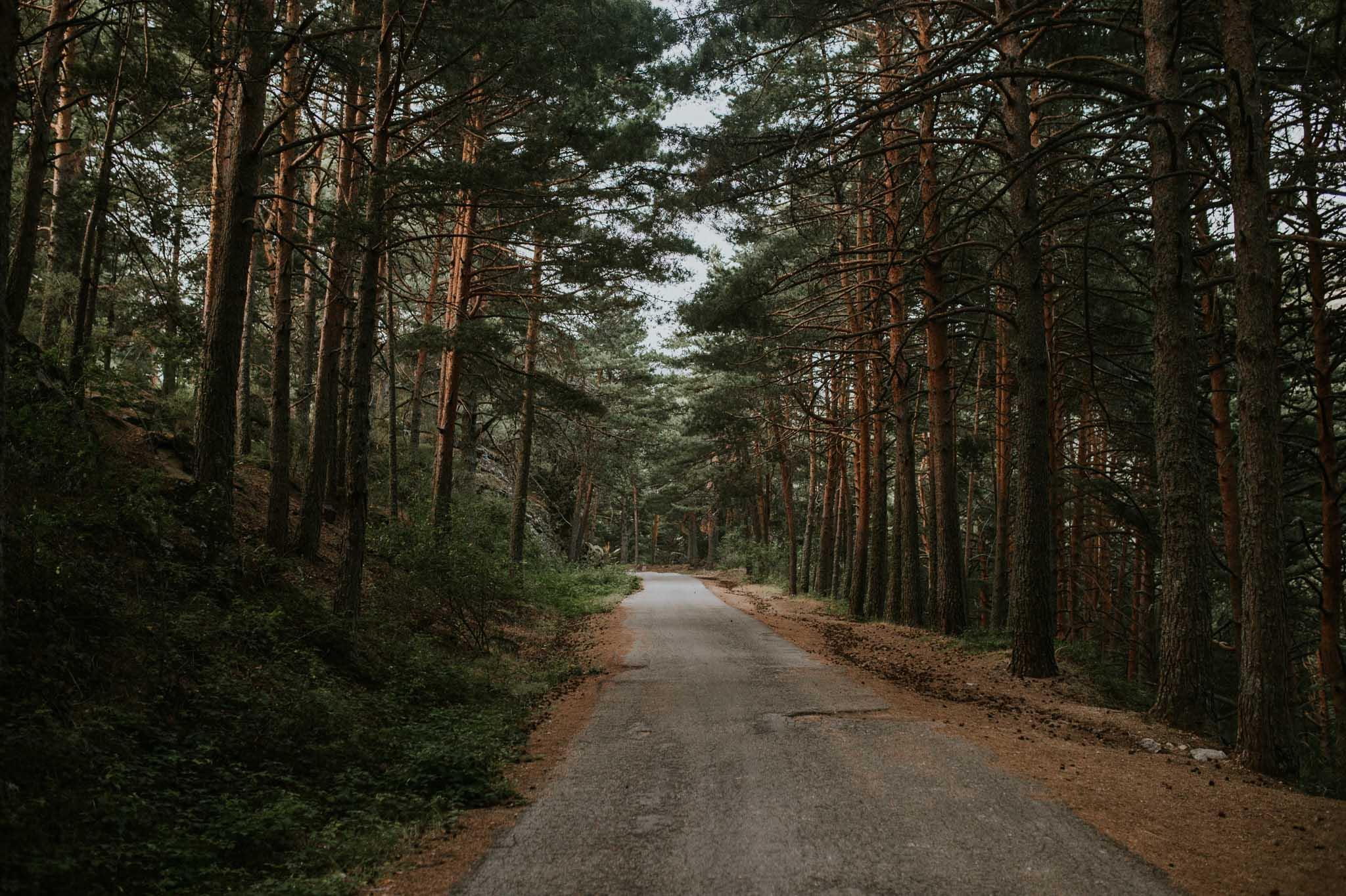 Fotografia pareja bosque 52 Concorazon